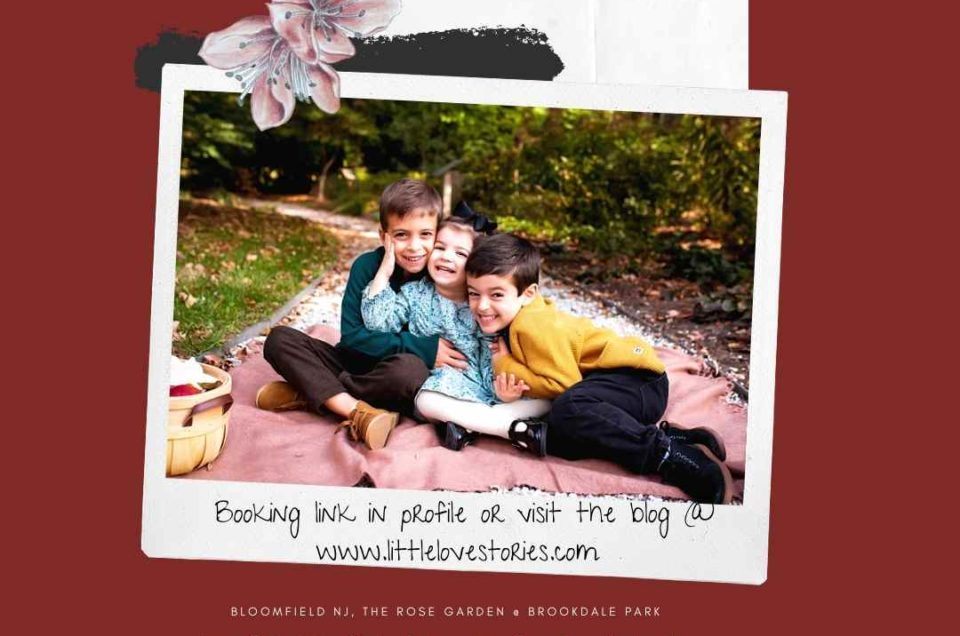 Fall & Holiday Mini Sessions!